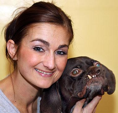 英國最醜的狗