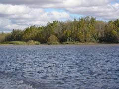Delta Paranaense
