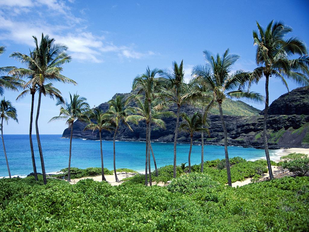 http://3.bp.blogspot.com/_Qxy2_aOu1eQ/THcI0twwxTI/AAAAAAAABhY/-7s-UJARpZE/s1600/Praia2.jpg