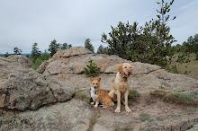 Jaxon & Otto