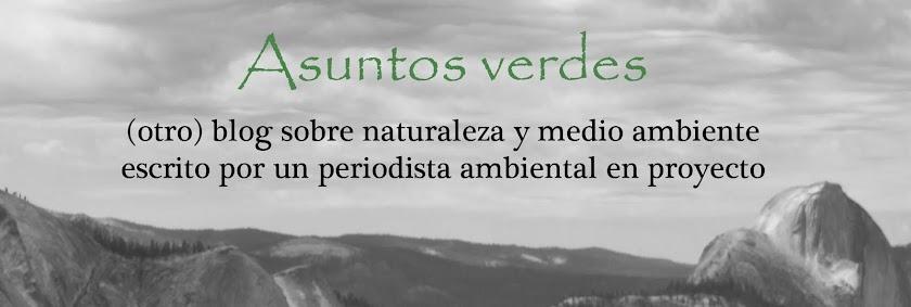 Asuntos Verdes