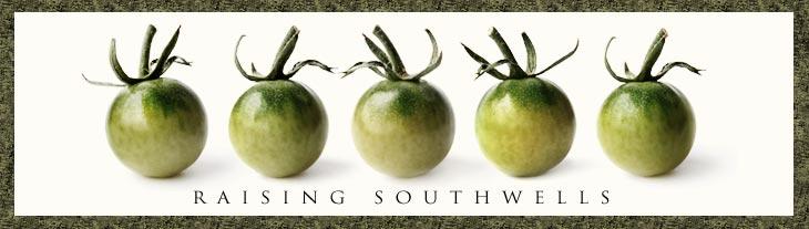 Southwell Blog