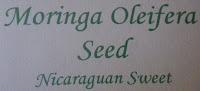 Moringa Oleifera, Mallungay, Ben, Drumstick Tree seeds