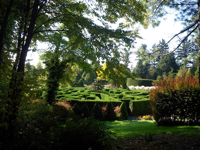VanDusen Hedge Maze