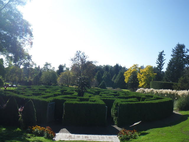 Amazing hedge maze at VanDusen  Botanical Garden