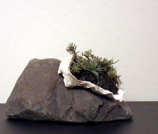 Seashell with accent plants on miniature mountain
