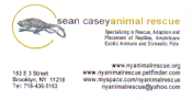 Sean Casey Animal Rescue: Adoptions