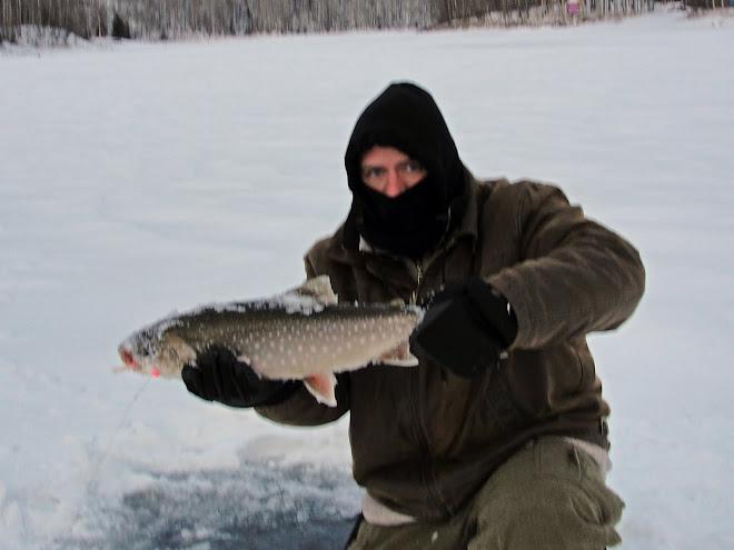 Alaska Char
