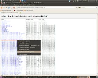 Ubuntu Linux Gwget