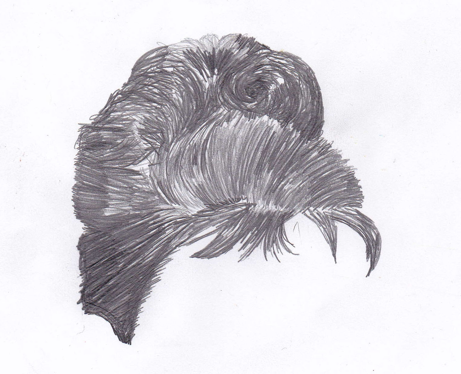 Pencil Drawings Of Hairstyles 9 male facial hairstyles i