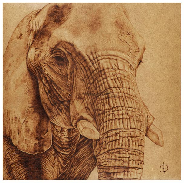 Pirograbado Elefante