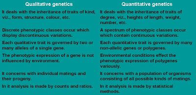 Difference between qualitative vs quantitative research