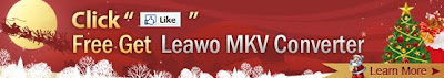 Leawo MKV Video Converter 2010 Christmas Giveaway