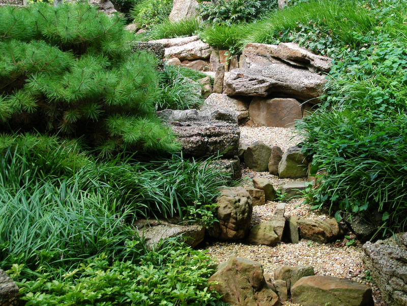 Natural gardening a japanese garden soothing colors and for Japanese garden bushes