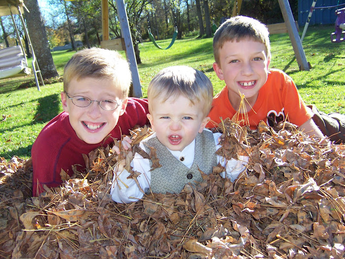 Bradley(10), Steven(7 1/2 )and Matthew (22 mos)