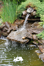 The Waterfall above the Koi Pond