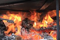 El foc:               calfor, mort...  vida?