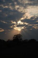 sunlight 16.04.08