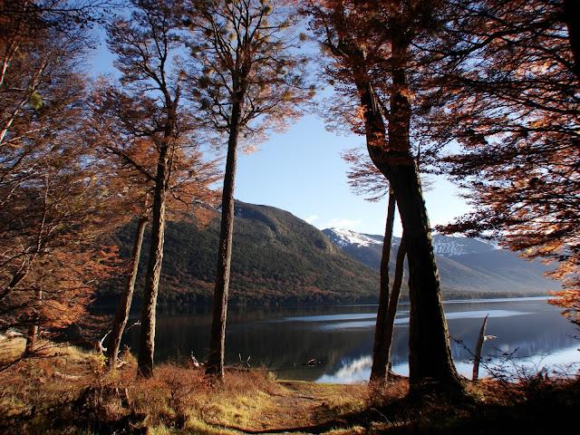 Herfst wallpaper met een meer en bomen