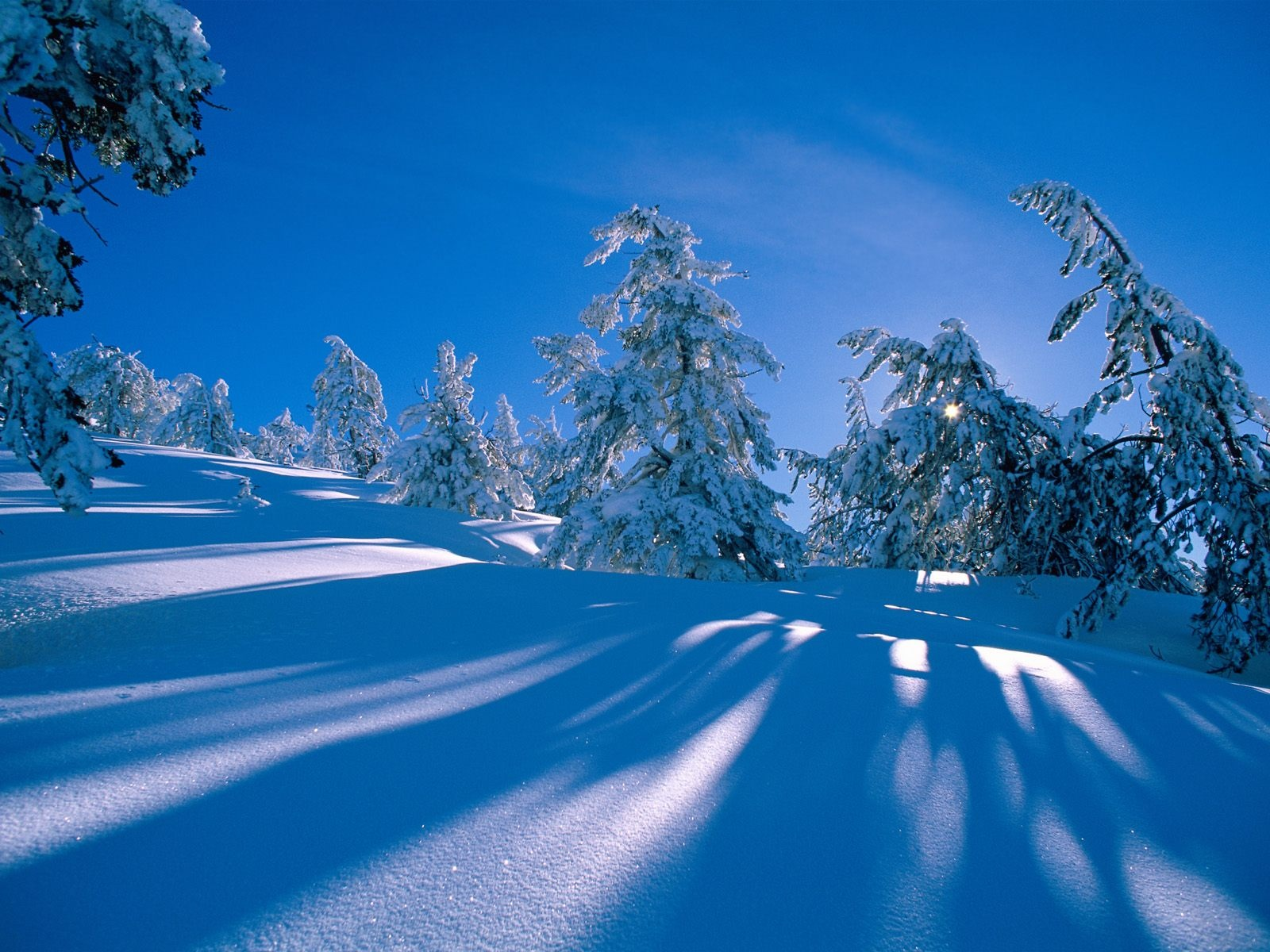 wallpapers hd winter saying pictures