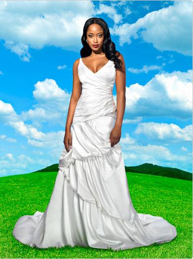 Blogger of the Bride: Disney Princess dresses