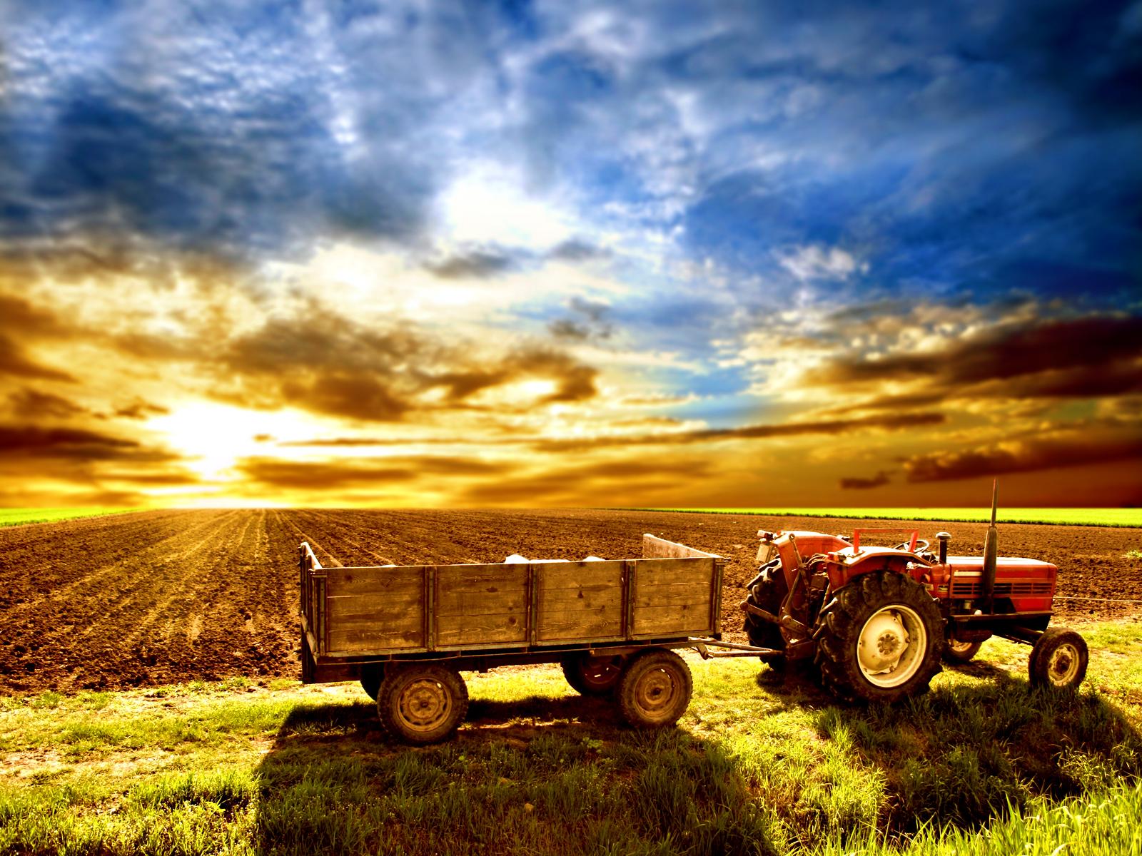 the collaborative inertia problem farm sunrise wallpaper