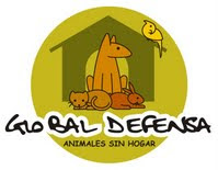 Global Defensa Animales sin Hogar