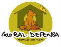Global Defensa Animales sin Hogar