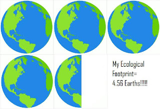 Ecological footprinting