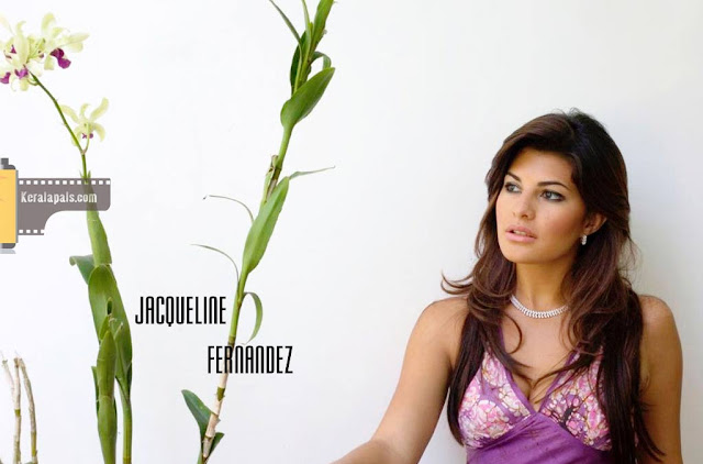Jacqueline Fernandez Hot-Sexy Pictures Wallpaper