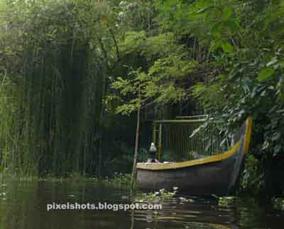 boats,kerala country boat,boats in kumarakom,kerala,canoes,vallom,vanchy,boating