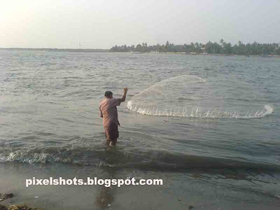 fishnet thrown to beach tides,circular throwing nets used in fishing,kerala fishing photos,shallow water fishing using nets,casting fish nets,kerala fisherman,kerala small scale fishing methods