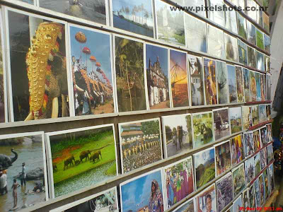 photos showing photographs for sale about sceneries in kerala