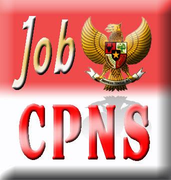 CPNS 2009/2010