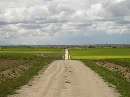 Un buen camino