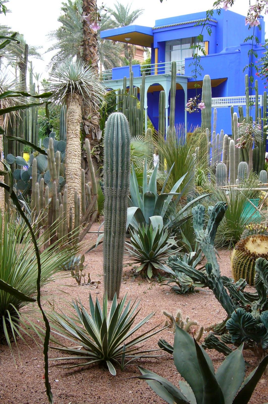Spiky Obsession Jardin Majorelle