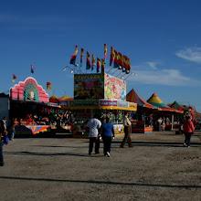 Oyster Festival!