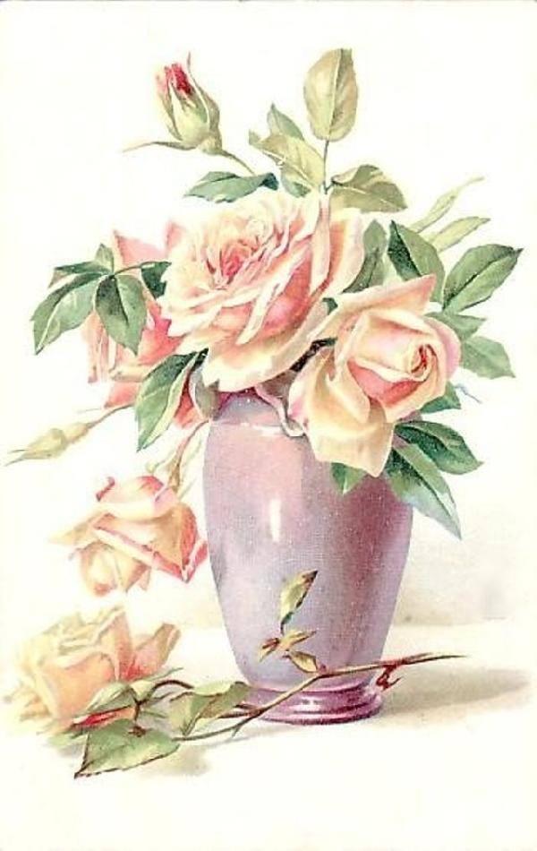 [Soft+Roses]