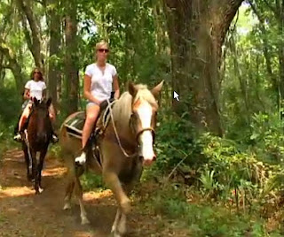 horseback riding on Hilton Head Island