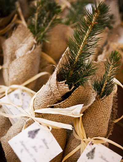 Great for a more rustic winter wedding tree saplings are ecofriendly and
