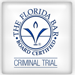 Criminal Defense Expert