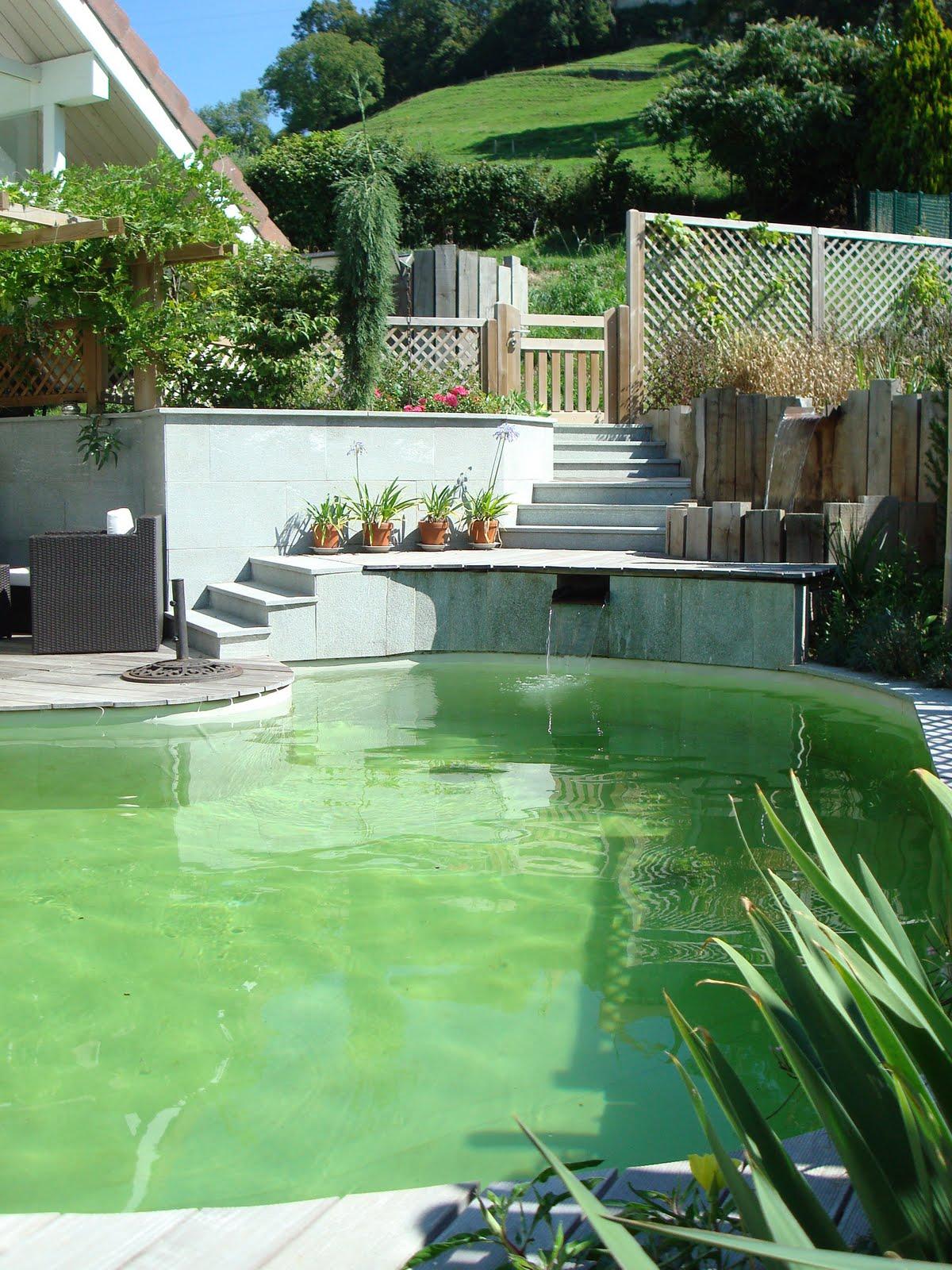 Paysagiste et am nagement de jardin thonon et annemasse for Constructeur de piscine naturelle