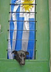 Blog uruguayo