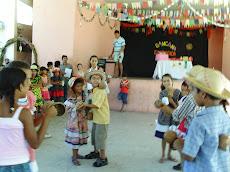 Viva São João 2008