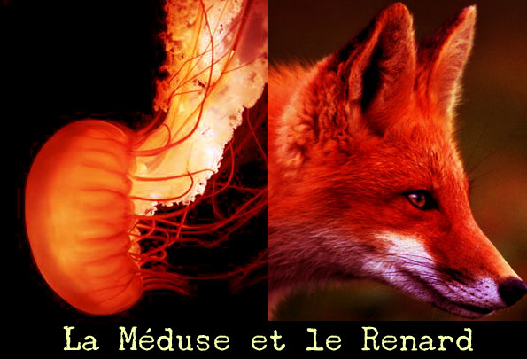 La Mduse et le Renard