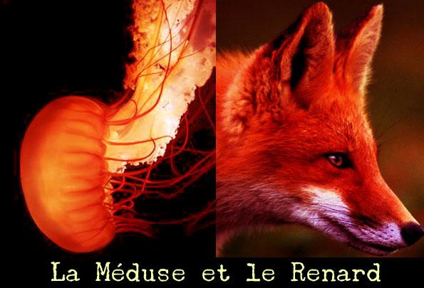 La Méduse et le Renard