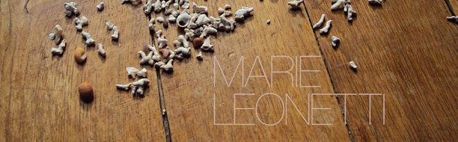 le blog de Marie Leonetti