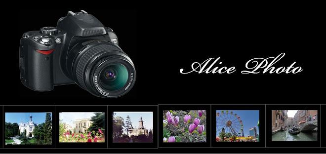Alice Photo