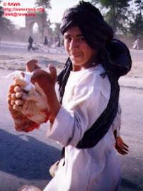 Muslimskt barbari