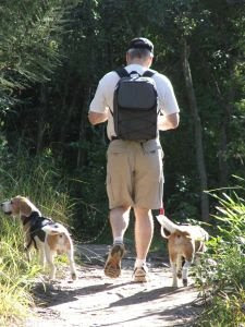 Walking is a great excercise. University professor gives tips about exercise.
